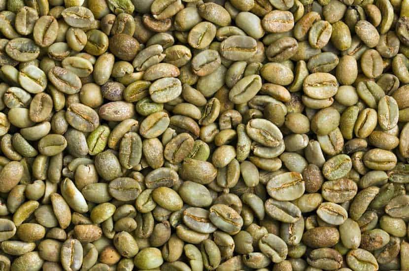 Idealica - Natürlicher Bestandteil #1 Grüner Kaffee-Extrakt
