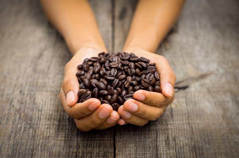 Koffein ist einer der Wirkstoffe von PhenQ