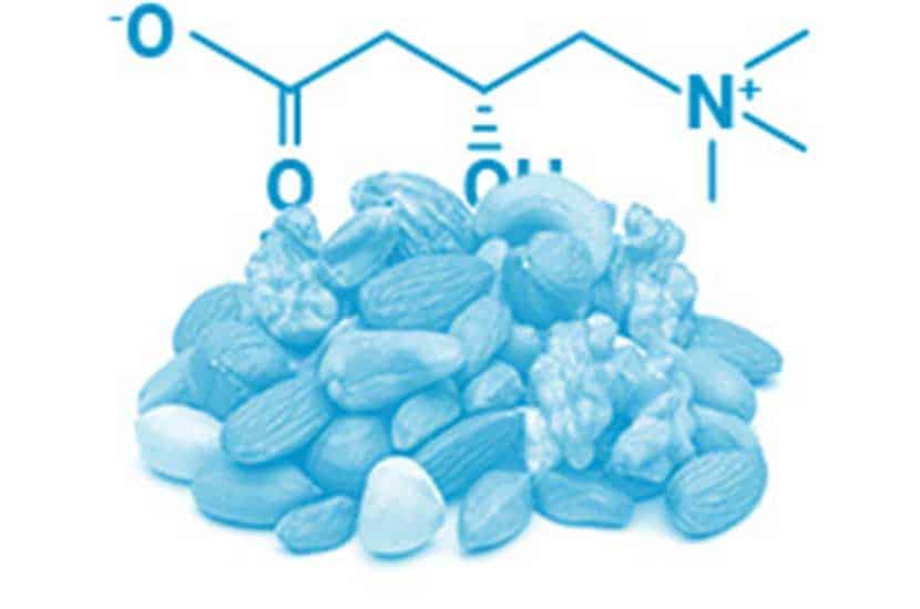 L-Carnitin kann zur Verbesserung der Muskelmasse beitragen