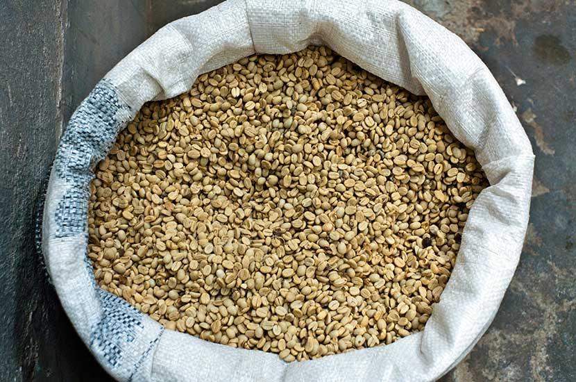 Chlorogensäure ist in ungeröstetem Rohkaffee enthalten