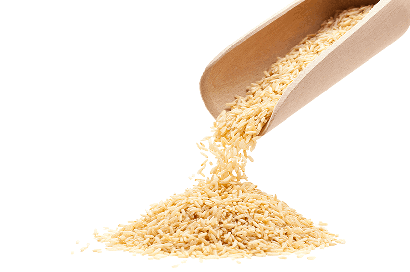 Choco Lite - Protein aus braunem Reis : Natürlicher Inhaltsstoff #4