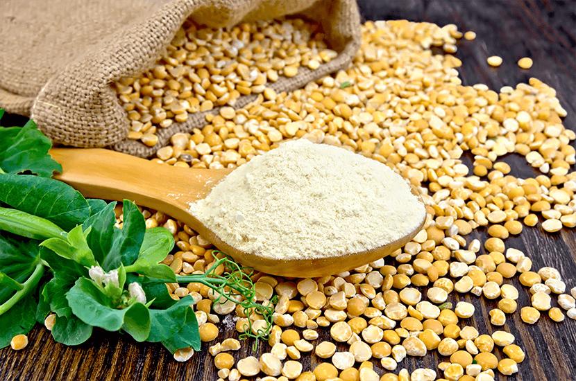 Choco Lite - Erbsenprotein : Natürlicher Inhaltsstoff #6