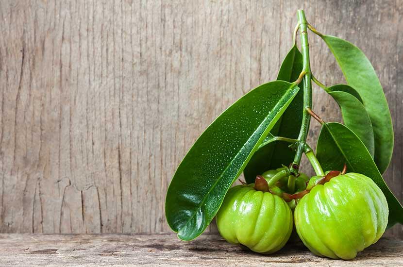 Garcinia cambogia-Extrakt kann helfen, den Appetit zu kontrollieren