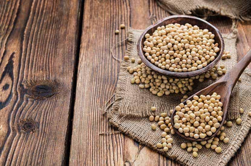 Die Einnahme von Sojaprotein-Nahrungsergänzungen kann zur Gewichtsabnahme beitragen