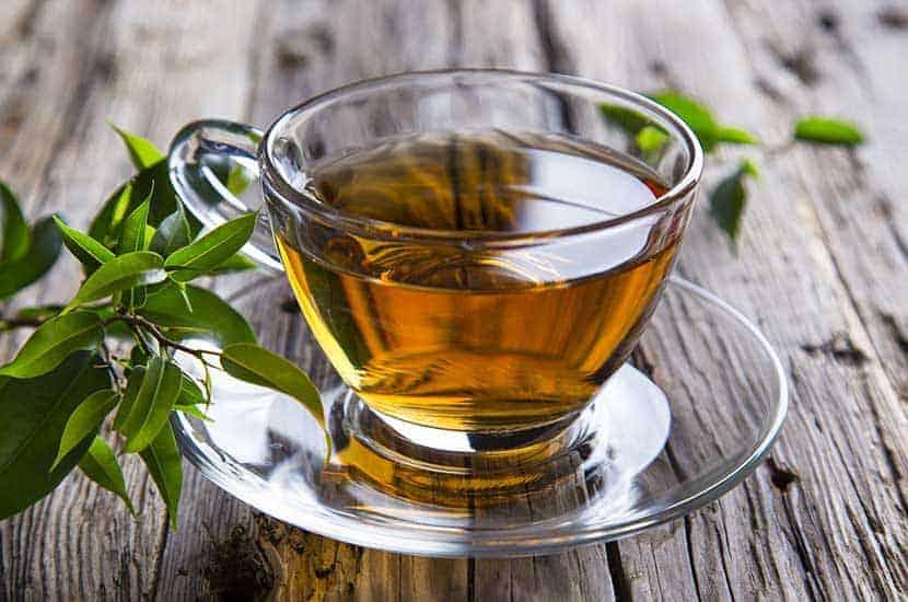 Grüner Tee ist reich an Antioxidantien und Substanzen, die Fett verbrennen können