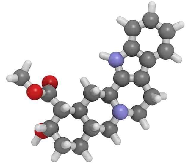 Yohimbin enthält aphrodisierende Moleküle